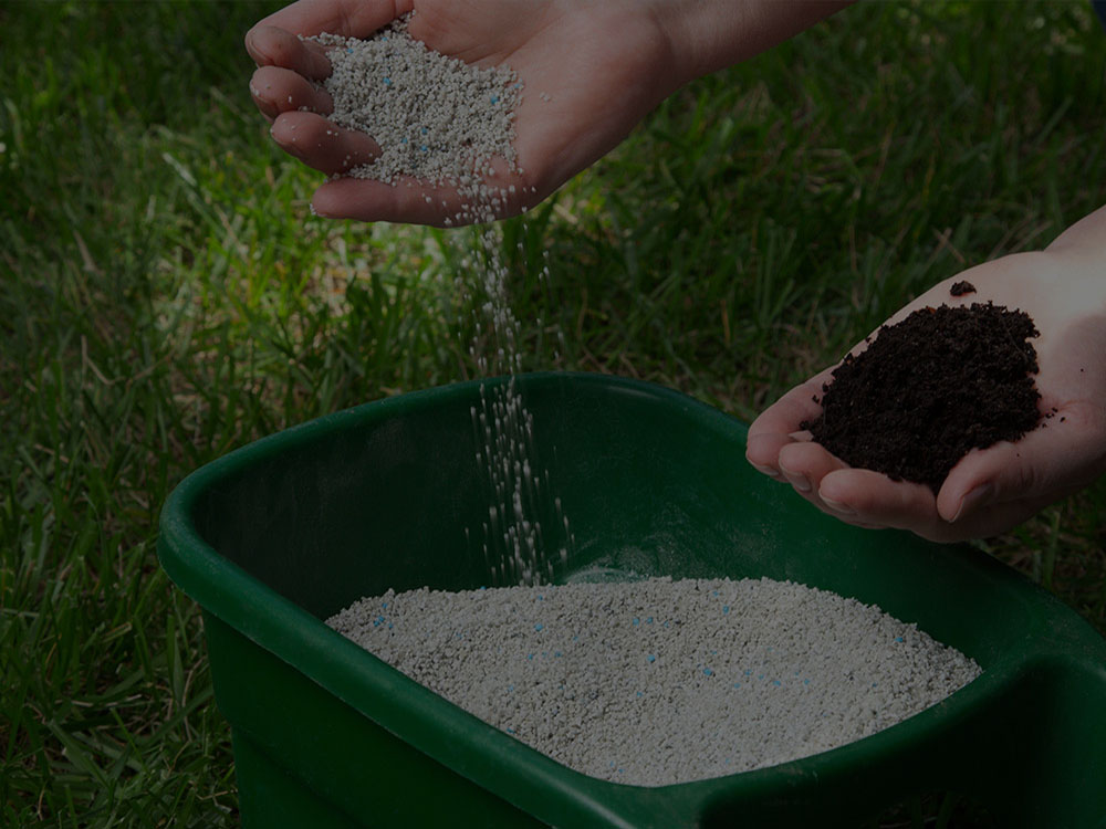 Summerfield Fertilization
