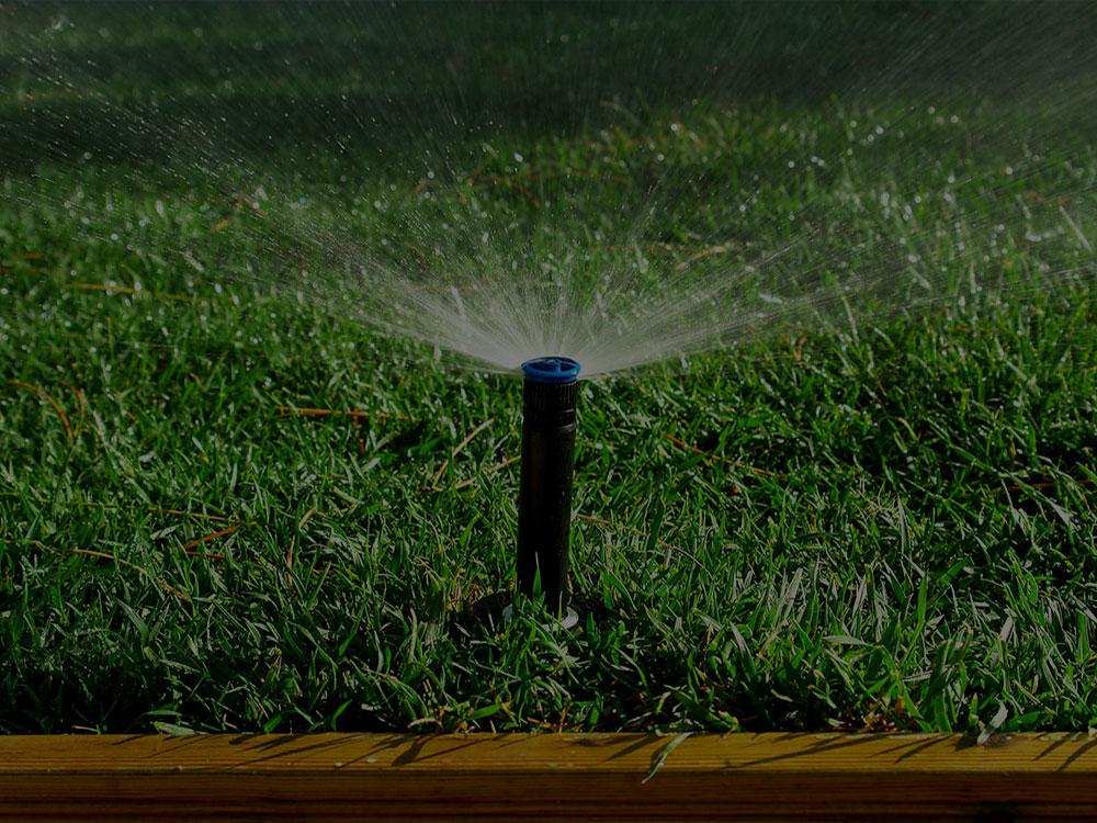 Summerfield Irrigation