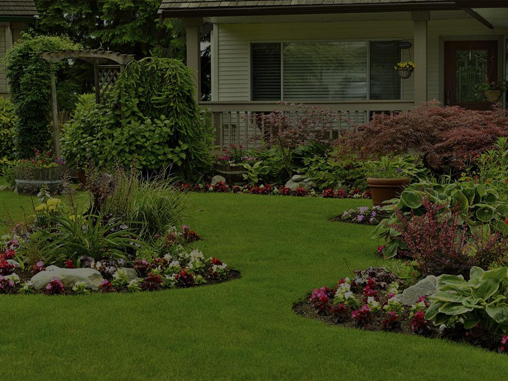 Summerfield Landscape Design