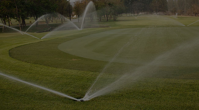 Summerfield Irrigation