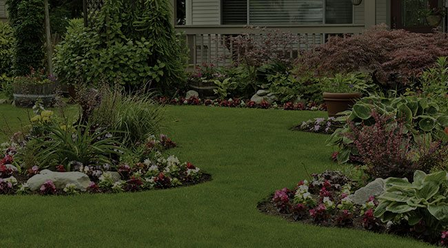 Summerfield Landscape Design
